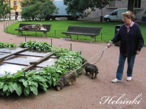Greetings From Helsinki